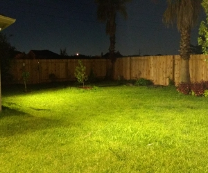 Backyard Flood Lights